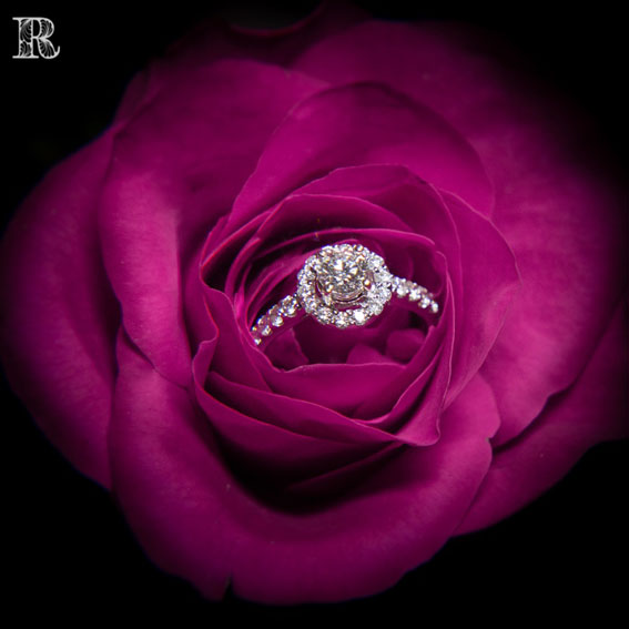 Rosa Wedding Photography Melbourne 2019 June FInal Full Size 49