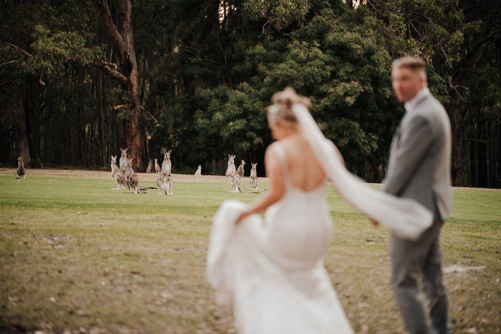 Cardinia Beaconhills Golf Links Wedding Photos Cardinia Beaconhills Golf Links Receptions Wedding Photographer Photography 191208 063