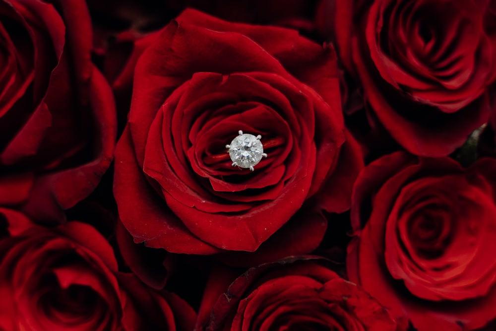 Luxor Function Centre Wedding Photos The Luxor Receptions Wedding Photographer Photography 020