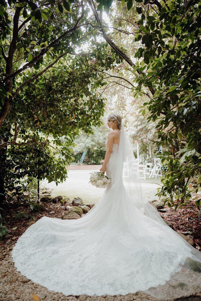 Lyrebird Falls Wedding Photos Lyrebird Falls Receptions Wedding Photographer Photography 191208 035