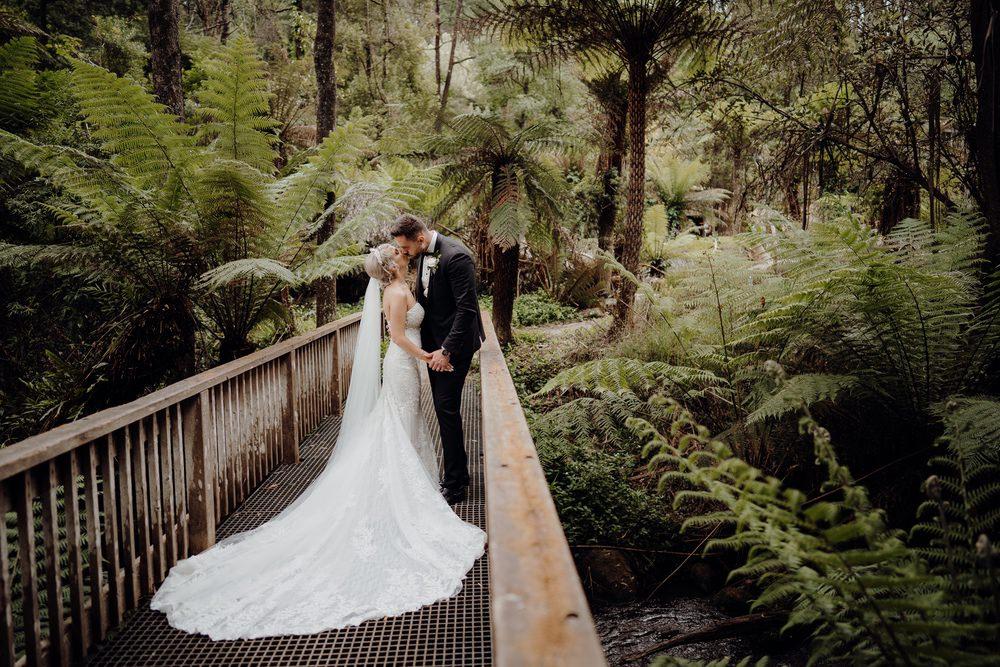 Lyrebird Falls Wedding Photos Lyrebird Falls Receptions Wedding Photographer Photography 191208 040