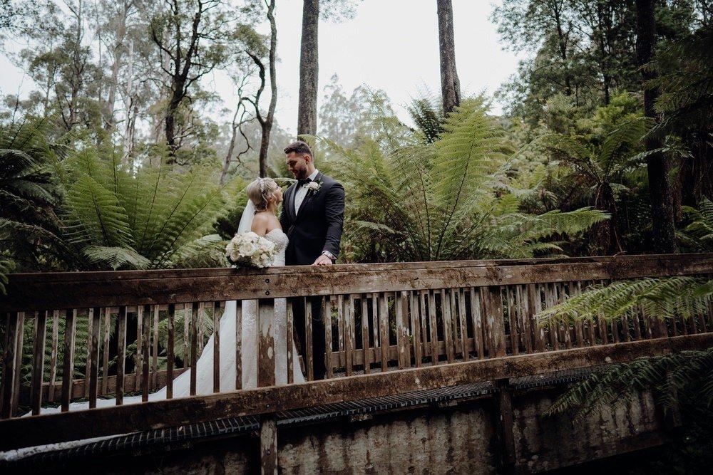 Lyrebird Falls Wedding Photos Lyrebird Falls Receptions Wedding Photographer Photography 191208 049