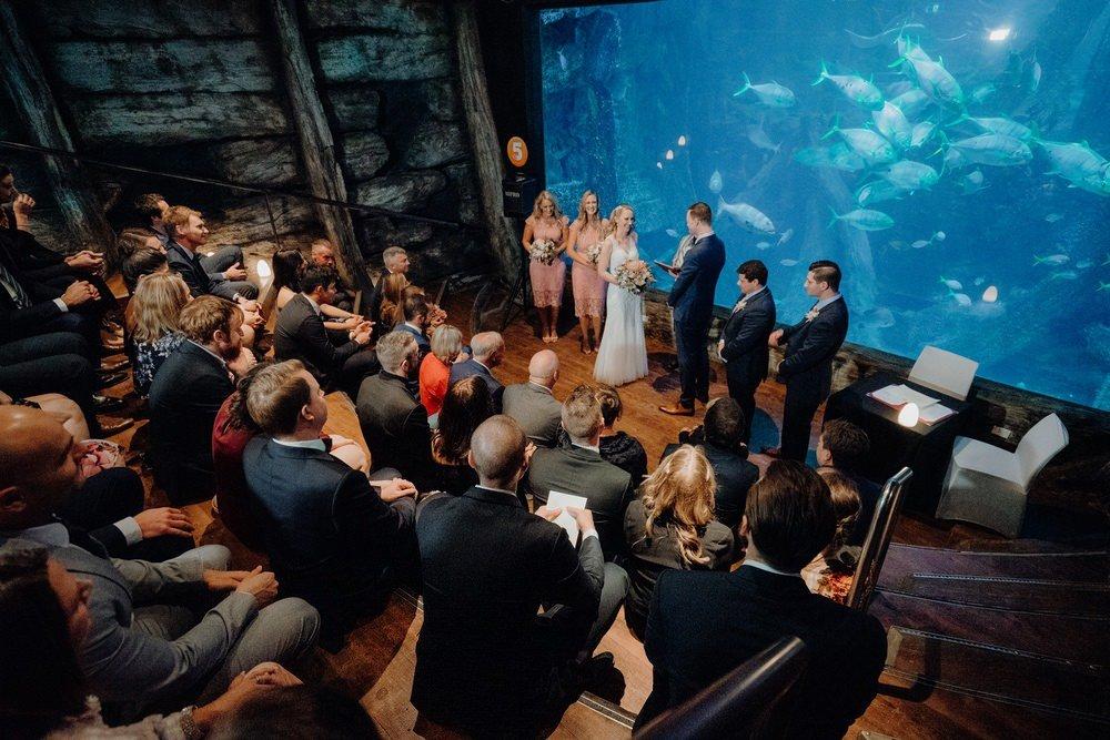 SEA LIFE Melbourne Aquarium Photos SEA LIFE Melbourne Aquarium Wedding Photographer 180428photography 038