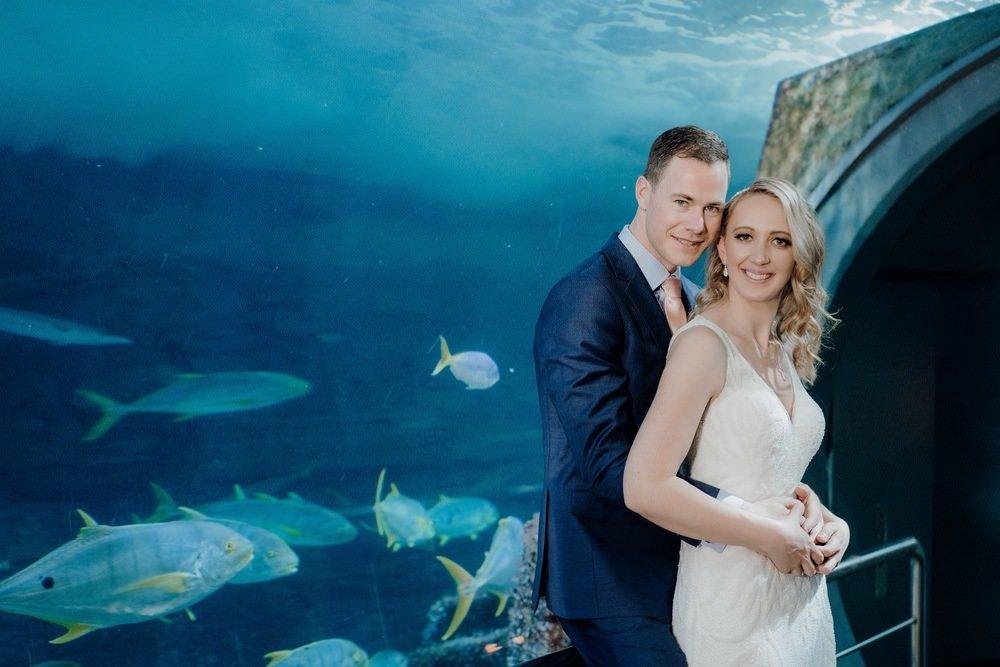 SEA LIFE Melbourne Aquarium Photos SEA LIFE Melbourne Aquarium Wedding Photographer 180428photography 049