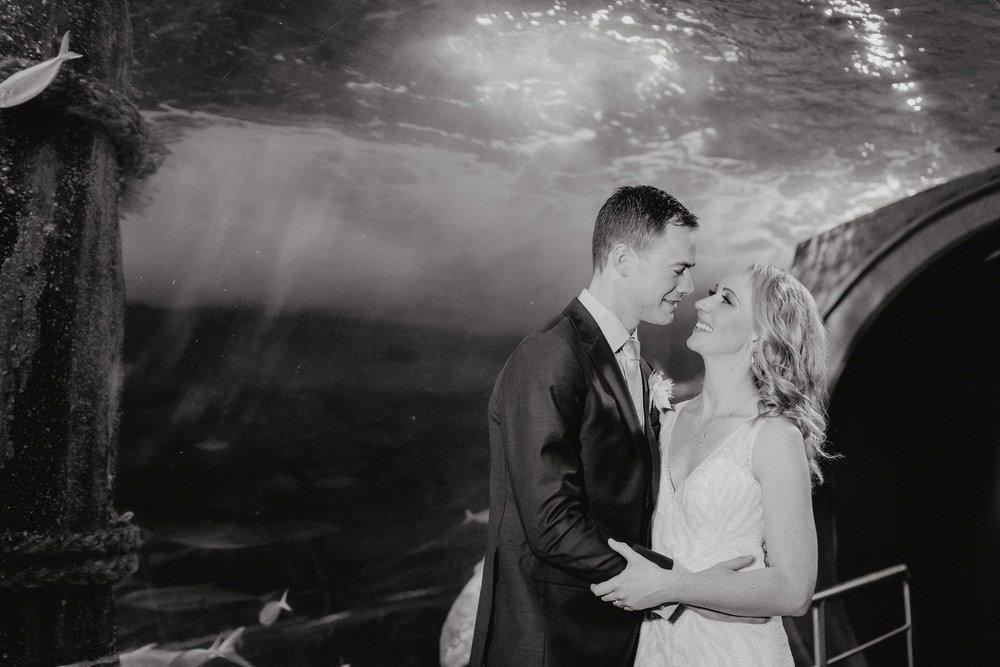 SEA LIFE Melbourne Aquarium Photos SEA LIFE Melbourne Aquarium Wedding Photographer 180428photography 050