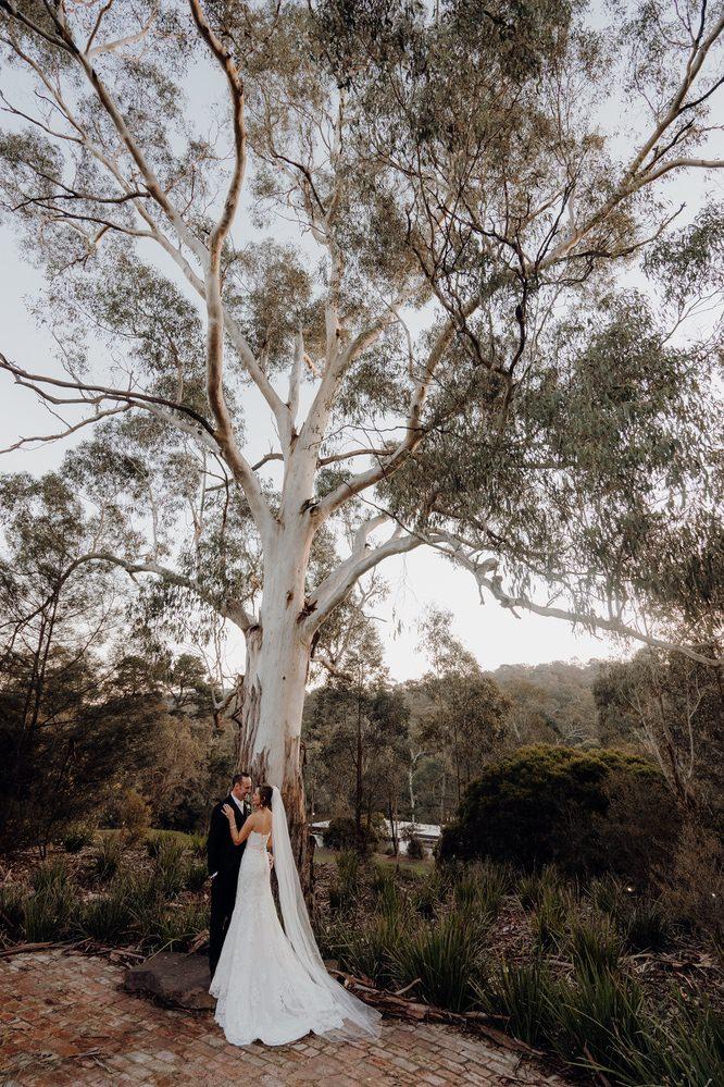 Potters Receptions Wedding Photos Potters Receptions Wedding Photographer Wedding Photography Package Melbourne 150508 037